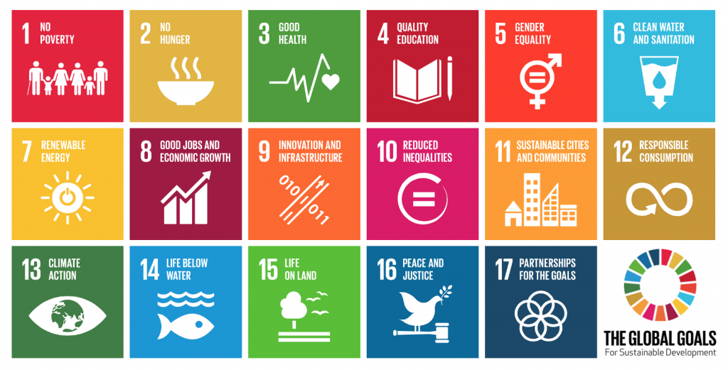 UN sustainable development goals millennial angel investor