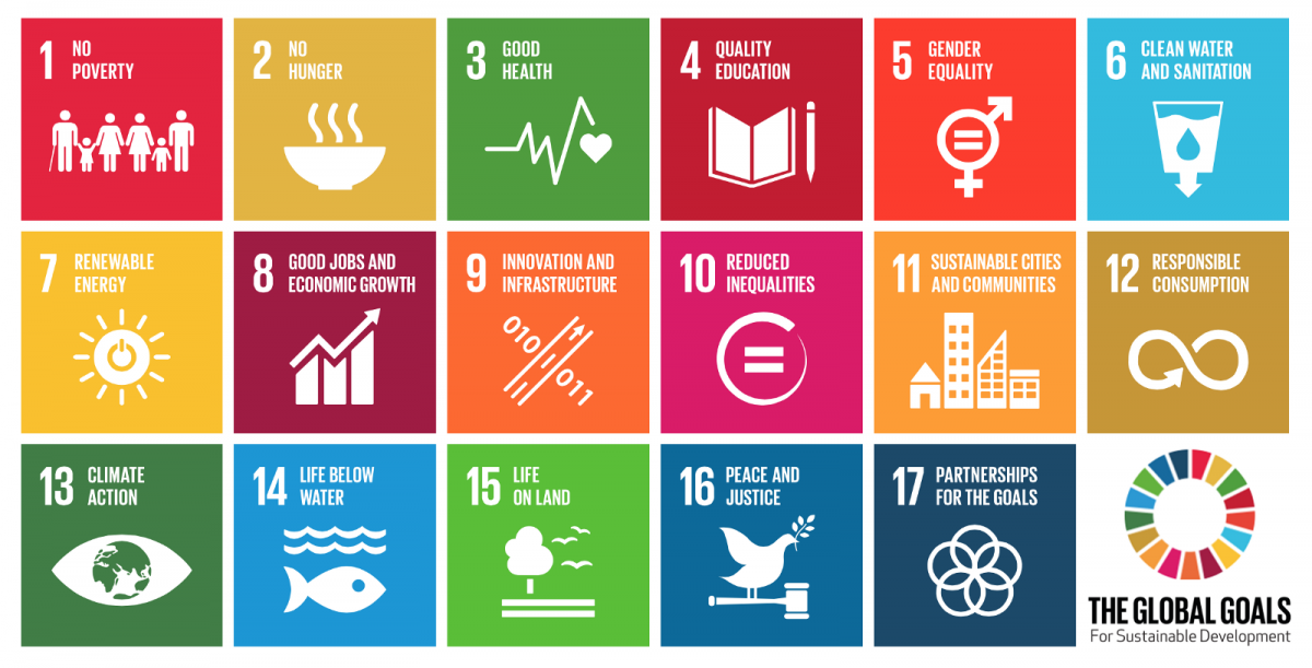 UN sustainable development goals millennial angel investor technology investors